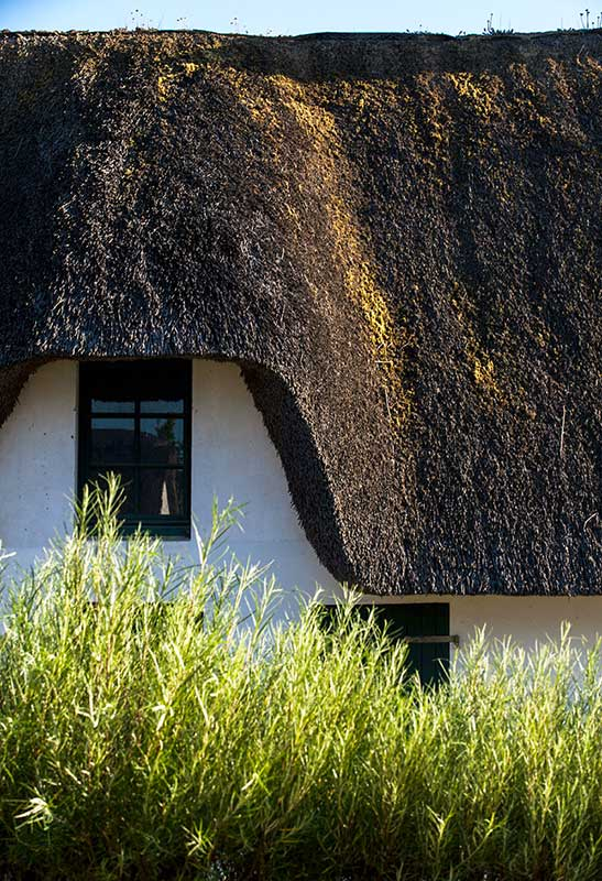 This typical thatched house is called thatched cottage. It can be seen on the island of Fédrun in Saint Joachim, in the regional park of Brière in Loire Atlantique.